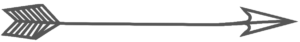 grey-pinted-arrow